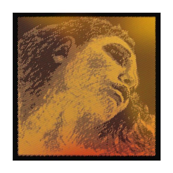 EVAH Pirazzi Steel E Ball ^ Evah Pirazzi Gold Violin String Set 4//4 GOLD G--
