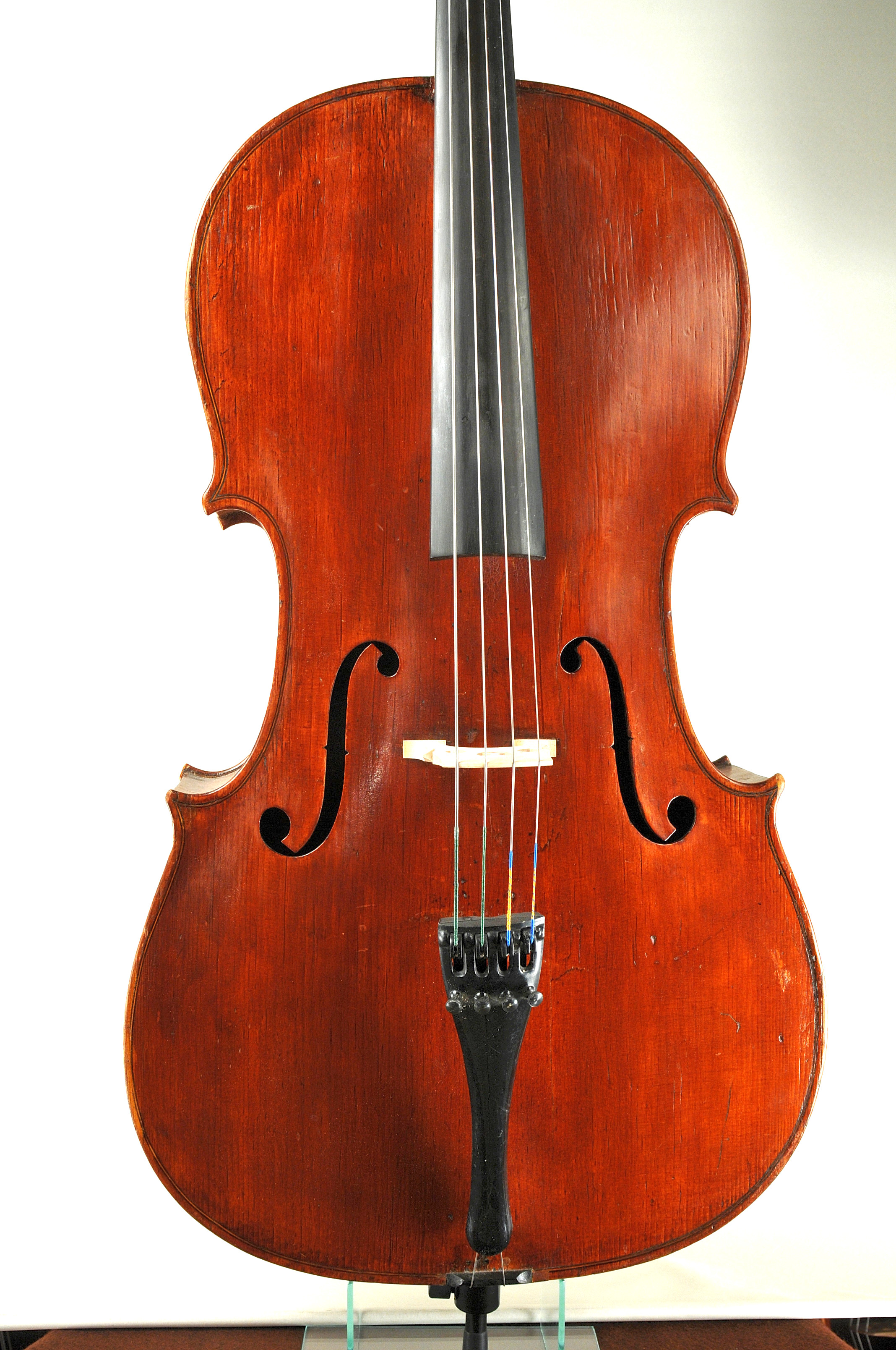 Giovanni Dollenz from Trieste 18. Cello